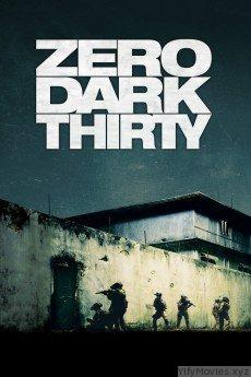 Zero Dark Thirty HD Movie Download