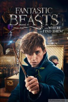 Fantastic Beasts and Where to Find Them HD Movie Download
